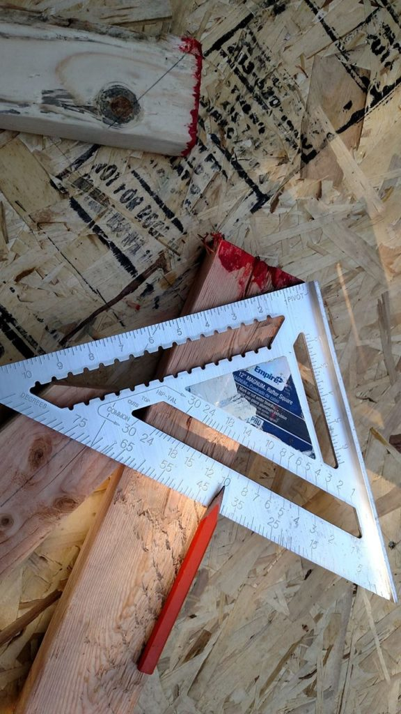 10/12 pitch for common rafters equals 40 degree angle.